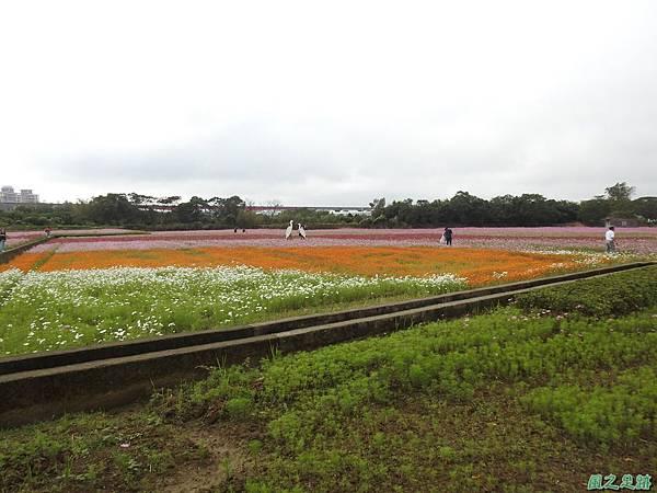 花彩節%5C平鎮場20191117(37).JPG