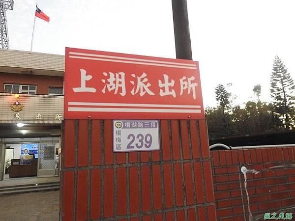 楊梅仙草花節20191124(86).JPG