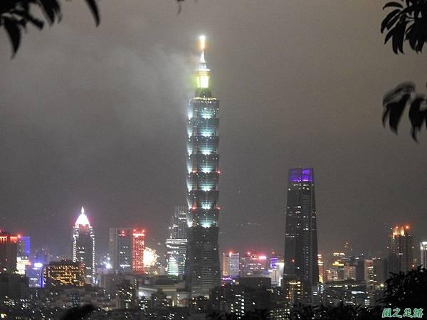 台北101跨年煙火秀20200101(5).JPG