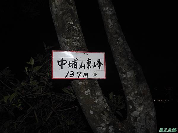 台北101跨年煙火秀20200101(28).JPG