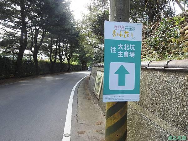 戀戀魯冰花20200212(1).JPG