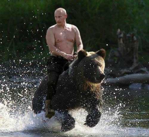 vladimir-putin-riding-bear.jpg