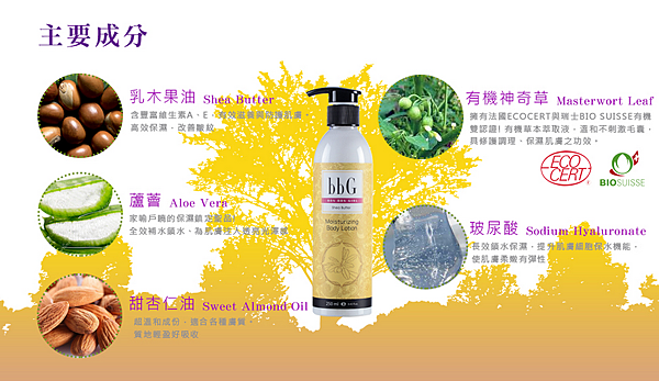 Muca乳油木保濕乳液-2.png