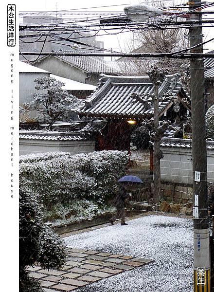 旅居大阪:大阪2015年初雪 osaka 1st snow in 2015