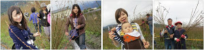 【MUJO趴趴走--國內旅遊】宜蘭三星地區農會主辦2013「三星銀柳節」農村體驗之旅熱鬧展開!快揪團報名吧!!
