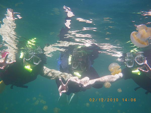 MUJO趴趴走...】最青春的生命應該是在探索世界:2010帛琉