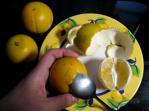 【飲食篇-11月當季水果】:柳丁-上班族方便的好水果