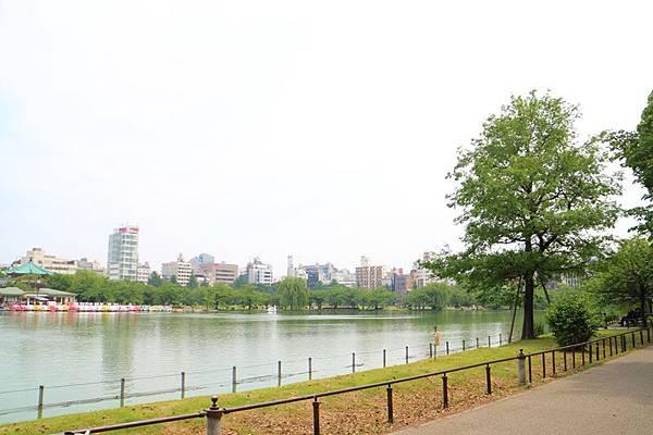 20140602-008.JPG