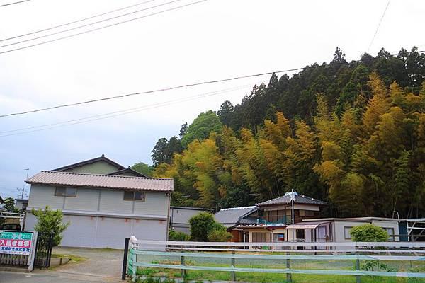 20140604-024.JPG