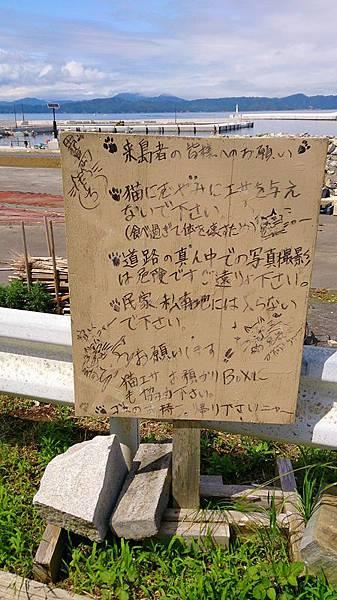 20140610-141.JPG