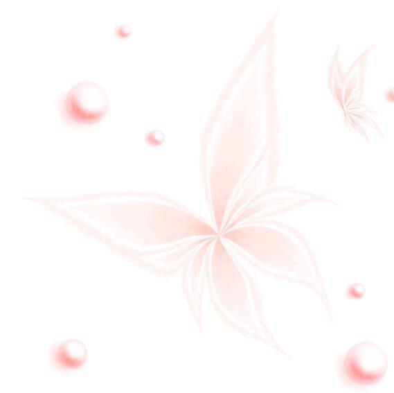 珍珠粉彩蝶