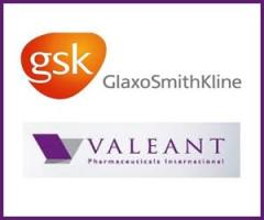 GlaxoSmithKline-24.jpg