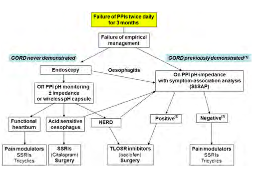 Algorithm for management of patients with refractory reflux symptoms