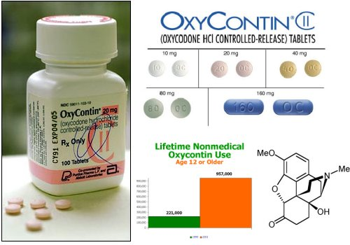 OxyContin-addiction-statistics2