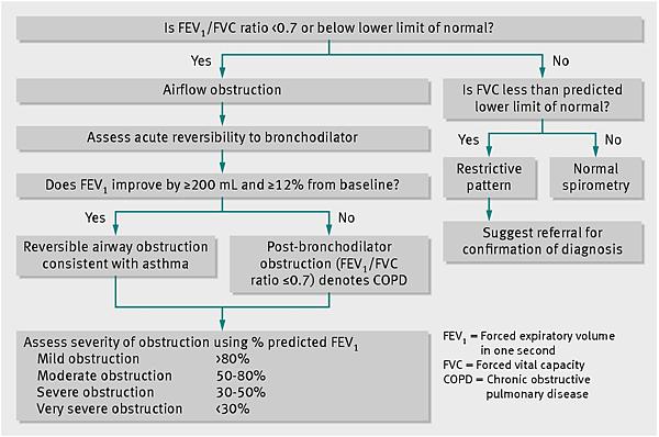 guide for interpretation of spirometry