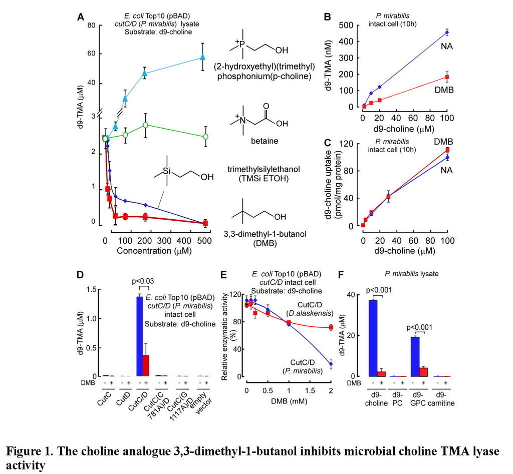 Non-lethal inhibition of gut microbial trimethylamine production for the treatment of atherosclerosis_頁面_16.jpg