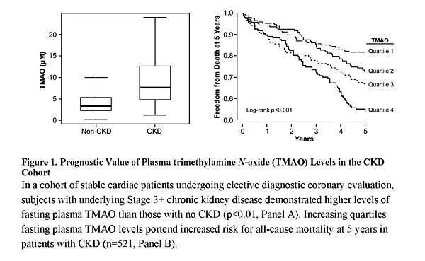 Gut Microbiota-Dependent Trimethylamine N-oxide (TMAO) Pathway Contributes to Both Development of Renal Insufficiency and Mortality Risk in Chronic Kidney Disease_頁面_13.jpg