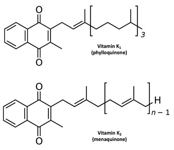 vitamin-K1-K2-620x534.png