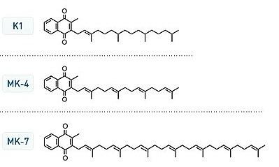 400px-Vitamin_K_structures.jpg