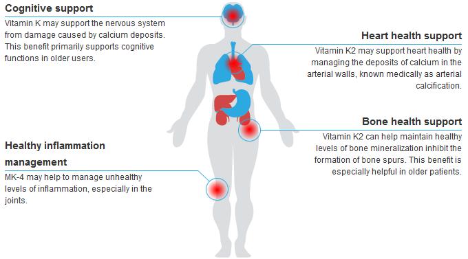 vitamin-k2-benefits-diagram.png