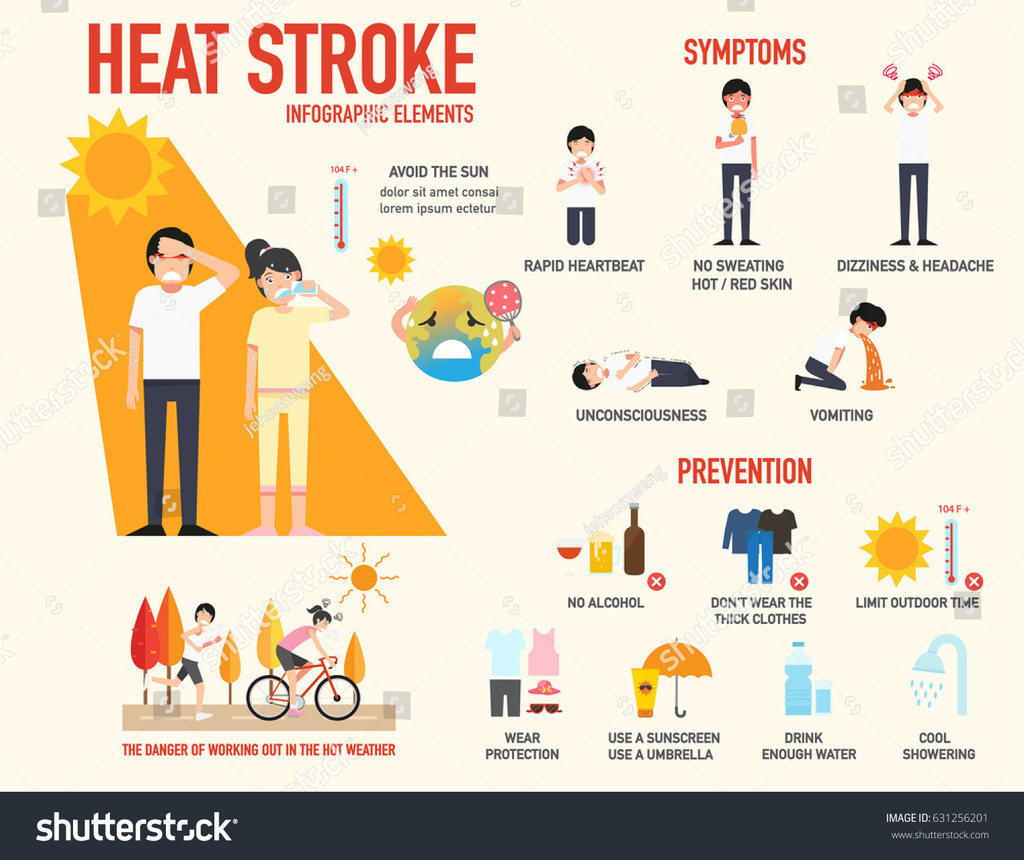 stock-vector-heat-stroke-risk-sign-and-symptom-and-prevention-infographic-vector-illustration-631256201.jpg