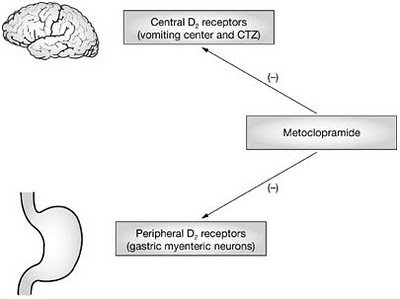 metoclopramide.jpg