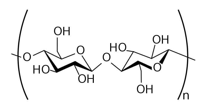 800px-Cellulose-2D-skeletal.svg.png