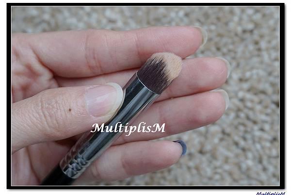 sigma 3dhd brush3.jpg