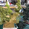製作各類型植物