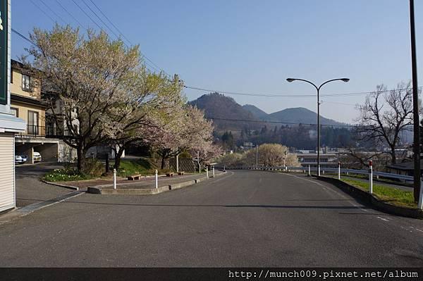花見山散步趣0003.JPG