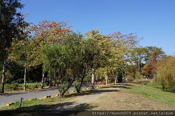 巴克禮公園0001.JPG