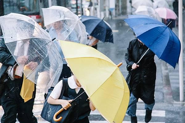 颱風假停止上班上課日文577_TP_V4