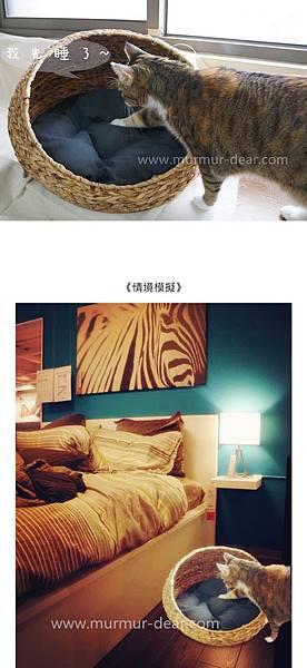 cd015-7.jpg