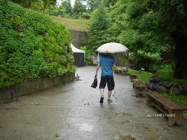右下雨了.JPG