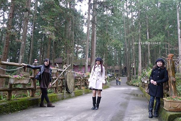 森林另一端.JPG