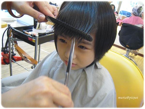 剪髮.JPG