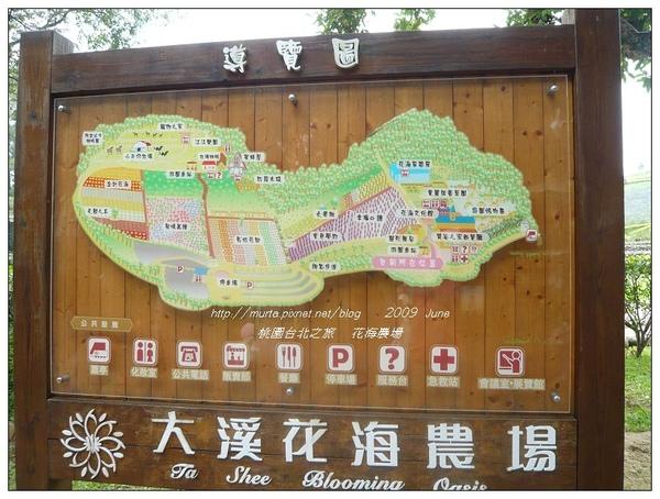 花海農場.jpg
