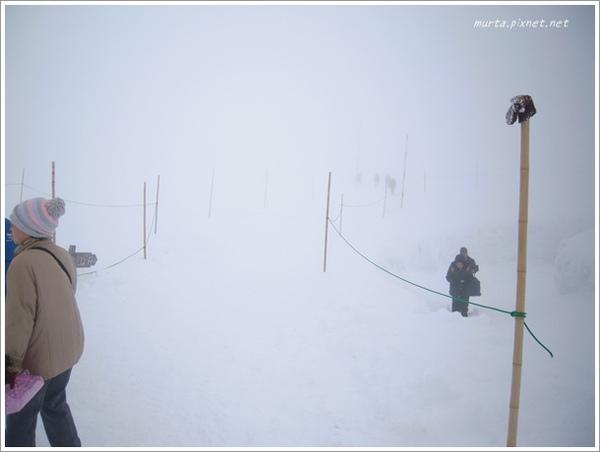 霧茫茫.JPG