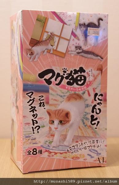 名字就叫磁鐵貓