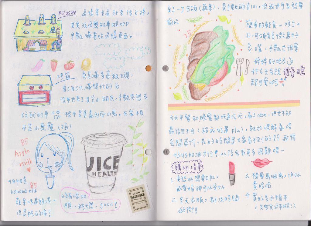 diary10
