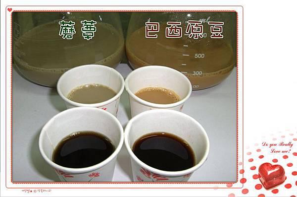蘑蕈咖啡 v.s. 巴西原豆咖啡...
