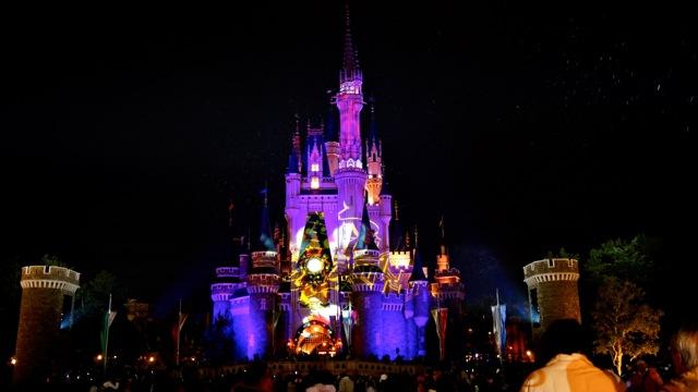 DisneyLand111210_129.jpg