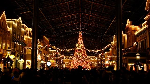 DisneyLand111210_135.jpg