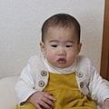 dodo111227_07.jpg
