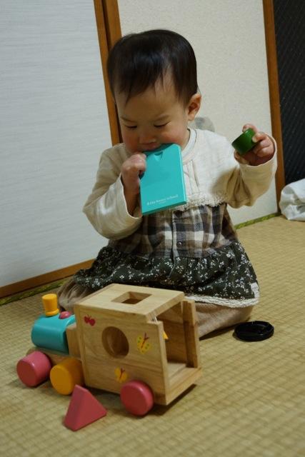 dodo120329_8