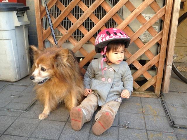 iphone_201211_23