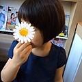 IMG_6287.jpg