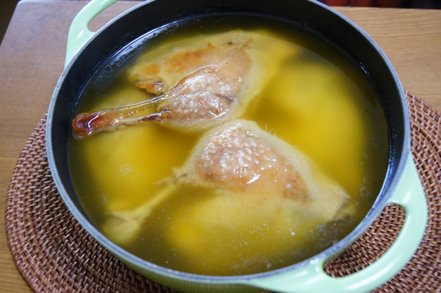 duck07.jpg