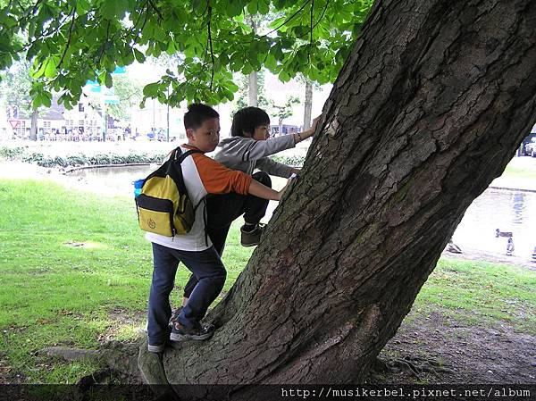 男孩想爬樹