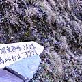 DSC_0124(浮水印.JPG